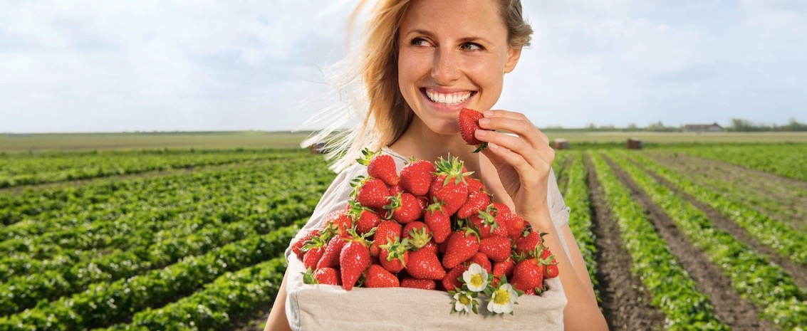 Erdbeerbanner