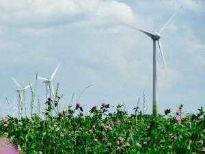 Windrad Westhof Energie